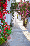 Quiet back street in small traditional greek village