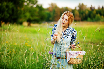 The beautiful girl collects lavender flowers in a basket