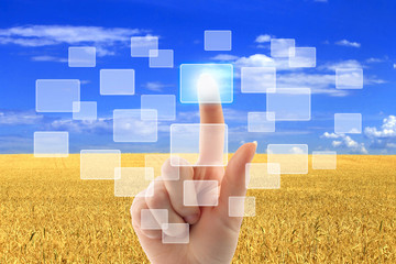 Woman hand pushing virtual icons on interface over wheat field