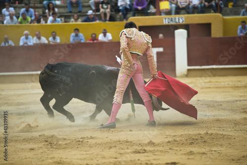 Staande foto Torero toreando en una corrida típica española.