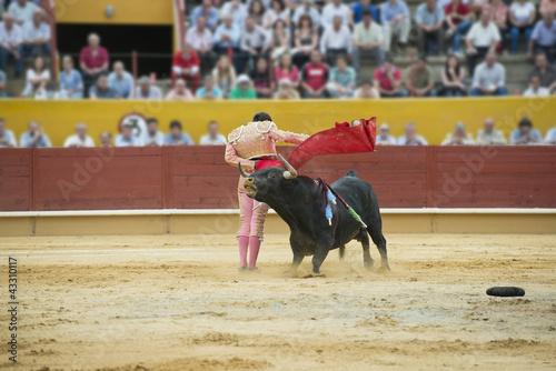 Staande foto Torero ejecutando un pase con la muleta.