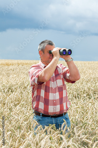 Man with binoculars in cornfield