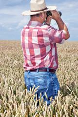 Man with binoculars in cornfield