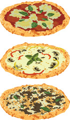 a set of different pizzas