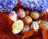 Fototapety Easter eggs in a basket with colorful feathers