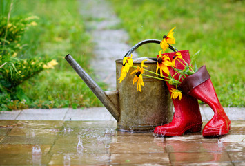 Red rain boots, watering can and flowers in spring garden