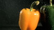 Tasty peppers in super slow motion receiving water