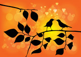 Love Birds on a Tree with Sunset in background - Vector