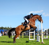Show jumping with brown horse in England