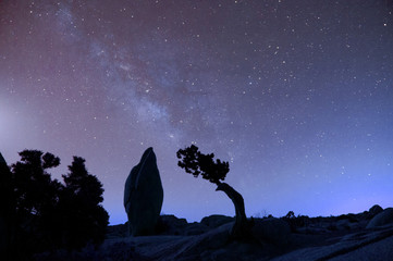 Stars in sky over desert