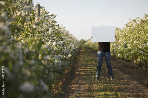 Caucasian woman holding blank placard in crop row