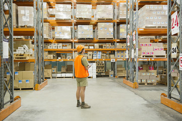 Worker looking at inventory in warehouse