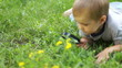 Little boy with a magnifying loupe looking at flowers