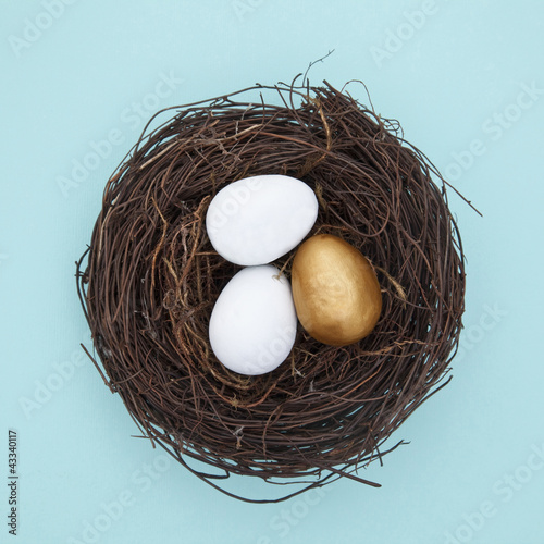 Eggs and one golden egg in nest