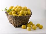 Lemons overflowing in basket
