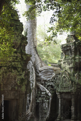 Ruins in Ta Prohm temple