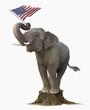 Elephant on tree stump holding American flag