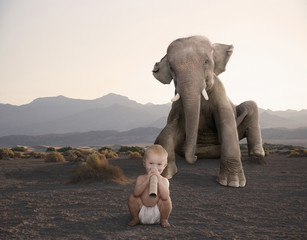 elephant sitting in desert with baby