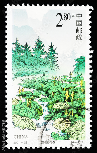Stamp shows the Wild lotus canyon, circa 2001