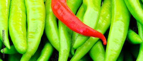 Poster Red and green peppers