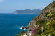 Cliffs in Riomaggiore.  Cinque Terre, Liguria, Italy