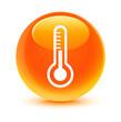Thermometer Orange Button