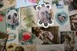 cartes postales d'amoureux.