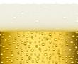 obraz - Light beer with bi...