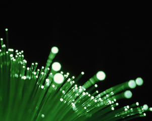Close up of green fiber optic wires