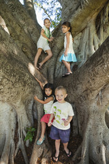 Children standing in large tree