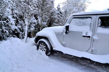 Auto im Schnee Winter