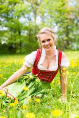 Junge Frau in traditionellem Dirndl auf einer Frühlingswiese