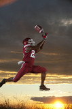 Black football player catching football player in mid-air