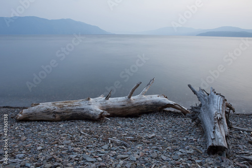 Driftwood on shore of tranquil, remote lake