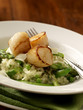 Grilled scallops served on greens