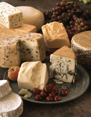 Selection of exotic cheeses