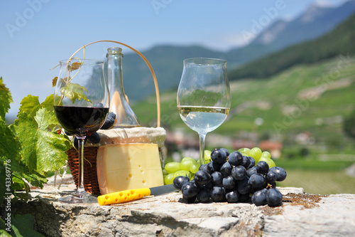 Wine and grapes. Chateau de Aigle, Switzerkand