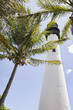 Lighthouse and tropical palm trees