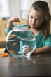 Caucasian girl feeding fish in fish bowl