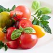 bunte tomaten