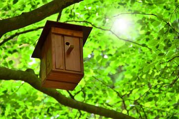 Vogelhaus im Grünen