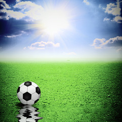 Classic soccer ball on green grass reflecting in water