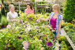 Woman shopping for flowers at garden centre