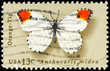 USA - CIRCA 1977 Orange Tip