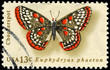 USA - CIRCA 1977 Checkerspot
