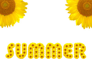 Summer Text made with sunflowers isolated