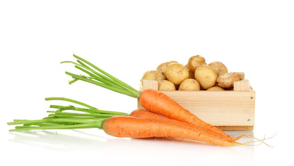 young potatoes in a wooden box with carrots isolated