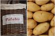 Pommes de terre - Patates