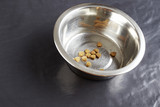Kibble dog or cat food in bowl poster