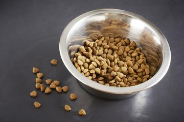 Kibble dog or cat food in bowl